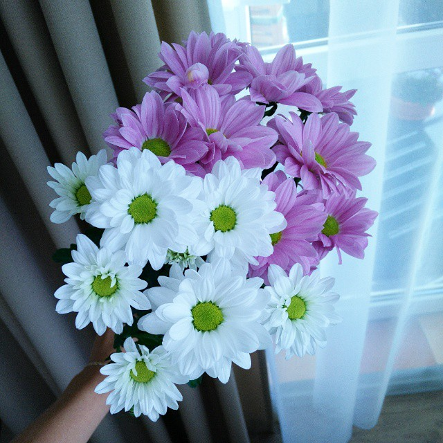 Kwiaty dodadzą uroku każdemu wnętrzu :-) Taki mały dodatek a tak wiele zmienia. #flowers #home #homedecor #mojemieszkanie #kwiaty