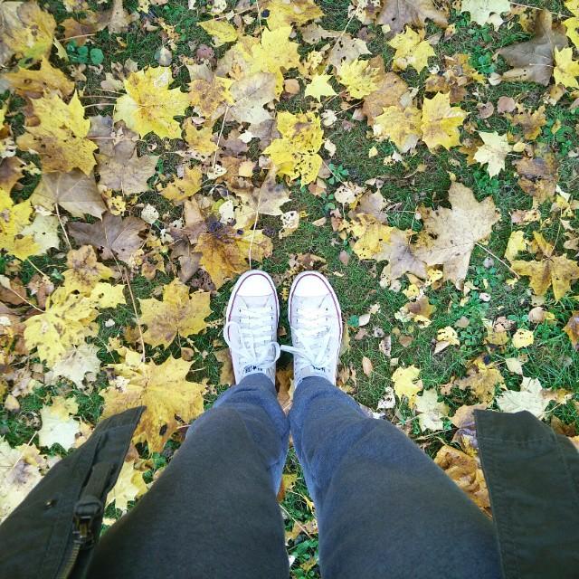 Kolory jesieni <3  #fall #jesień #spacer #relaks