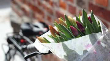 rower-miejski