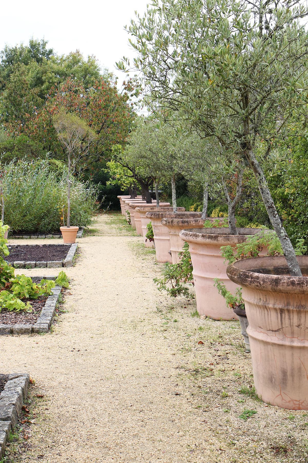ogród botaniczny yves rocher